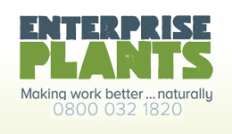 Enterprise Plants
